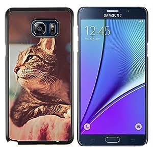 Actitud del gato- Metal de aluminio y de plástico duro Caja del teléfono - Negro - Samsung Galaxy Note5 / N920
