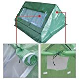 BenefitUSA Outdoor Green House Walk In Garden Greenhouse Canopy Gazebo Plant House (6'X5'X3')