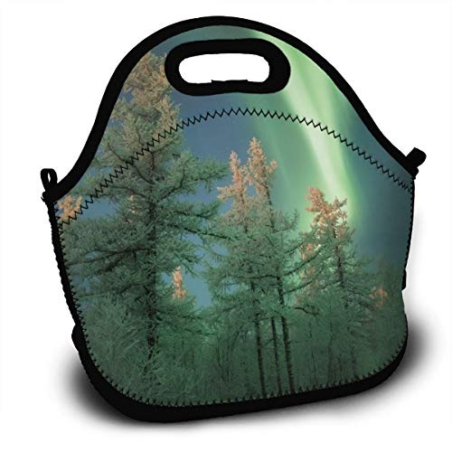 Dejup Lunch Bag Aurora Green Trees Tote Reusable Insulated Lunchbox, Shoulder Strap with Zipper for Kids, Boys, Girls, Women and Men -