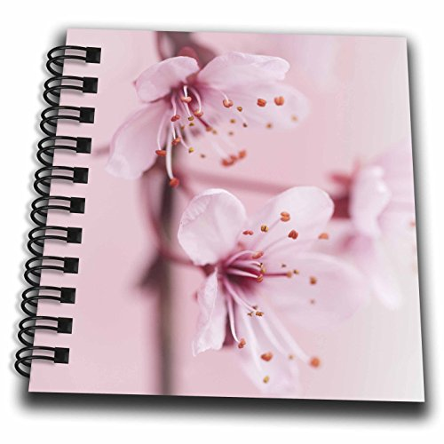 cherry blossom drawing book - 3