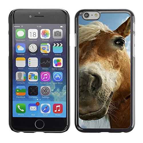 Premio Sottile Slim Cassa Custodia Case Cover Shell // V00003440 cheval sur les pâturages // Apple iPhone 6 6S 6G PLUS 5.5""
