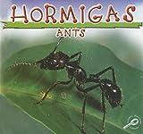 Hormigas: Ants (Biblioteca Del Descubrimiento De Los Insectos/insects Discovery Library) (Spanish Edition)