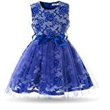 Cielarko Tulle Girls Dress Sleeveless Flower Embroidery Blue Green Princess Party Dresses for 2-7 Years
