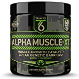 T6 Testosterone Booster Review – ALPHA MUSCLE-XT, Scientifically Formulated Muscle Builder for Men with Ashwagandha (KSM-66), Zinc, DIM (Estrogen Blocker) and 4 More Muscle Building Ingredients, 60 V-Caps