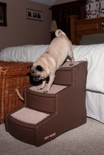 Buy pet stairs for large dogs