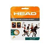 #5: Head Evolution Pro 16 Gauge Squash String