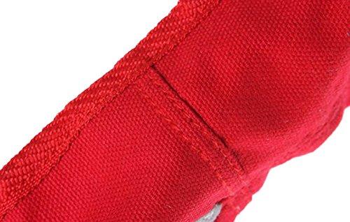 Feoya Chaussure de Danse Demi-pointes en toile-Bi-semelle-danse classique Chaussure de Ballet-Rouge - FR 40