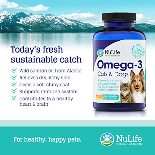 Pure omega 3 fish oil for dogs cats wild caught alaskan for Fish oil for dogs dry skin