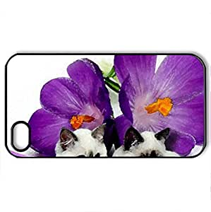 beautiful siamese - Case Cover for iPhone 4 and 4s (Cats Series, Watercolor style, Black)