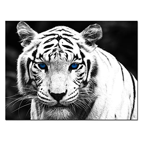(Nachic Wall - Tiger Canvas Wall Art for Living Room White Tiger with Blue Eyes Picture Print on Canvas Wild Animal Painting Giclee Artwork Gallery Wrapped Ready to Hang 24x32inches)