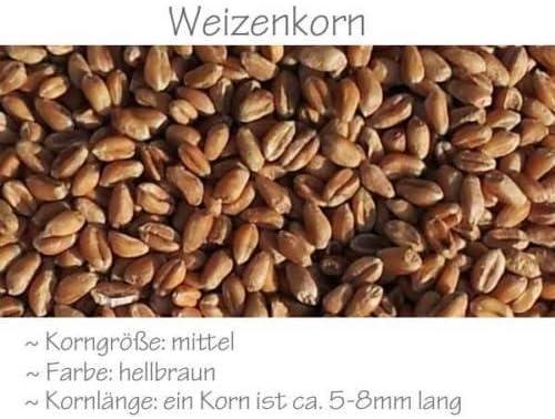 W/ärme-G/ürtel Bio-Dinkelkissen 7-Kammer mit Band langes Kissen zum Binden 65x15 orange R/ücken