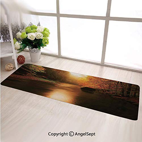 (Custom Anti Slip Long Rectangle Mat,Calm Serene Autumn Forest with Flowing River Sunlight Pine and Oak Trees BranchesMulticolor,Fashion Long Carpet Choose Your Width by Length)