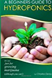 A Beginner's Guide to Hydroponics, Charles Deau, 1496159683