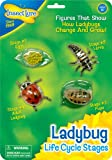 Oversized, anatomically accurate figures show how insects and other creatures change as they grow! Great for your budding scientist! Each figure is made of durable, flexible plastic and features details and colors specific to each insect or creature....