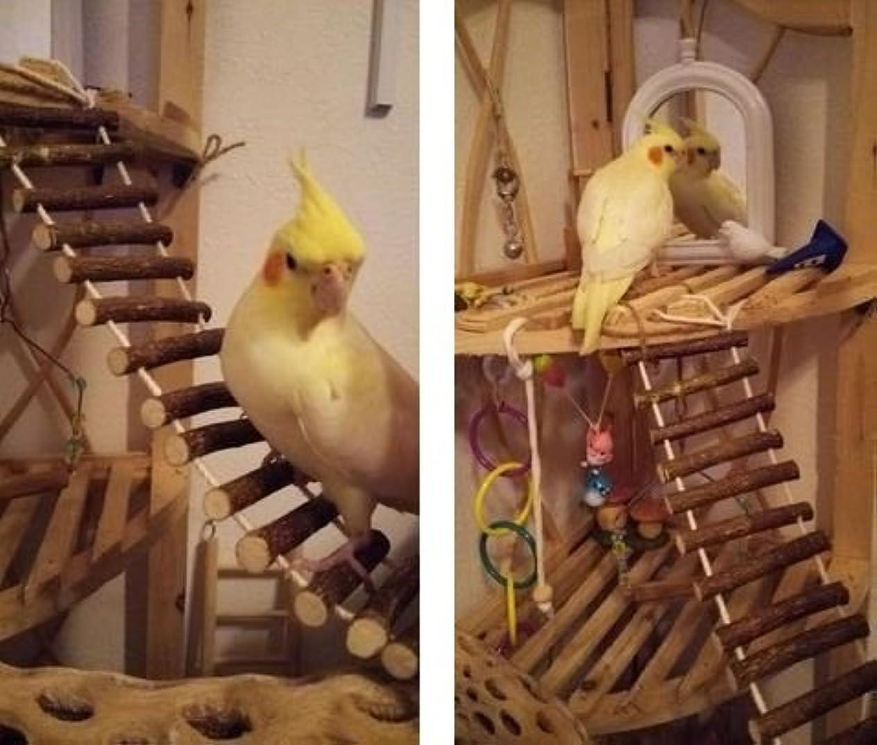 局混雑誘発するおもちゃ ペット用品 小動物 用品 インコ 鳥 おもちゃ はしご カラー ストレス 解消