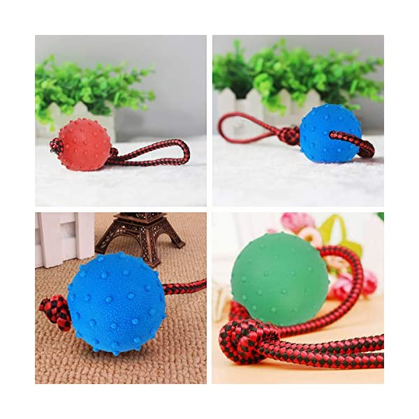Legendog Dog Rope Ball, 3 Pcs Ball on a Rope Dog Toy Natural Elastic Solid Rubber Dogs Balls Chew Toys for Small Dogs (Multicolor-3PCS) 5