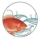 Caskata Studio CAS02015 Melamine Canape Plate Boxed Set, Pink Fish, 4 Count