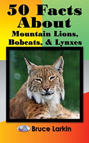 (50 Facts About Mountain Lions, Bobcats & Lynxes)