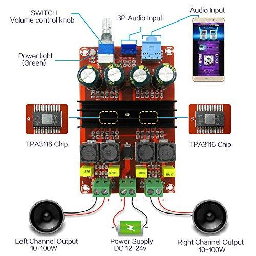 FidgetFidget Digital Amplifier Board TPA3116 2x100W Dual Channel Audio Speaker 12V-24V GAS1