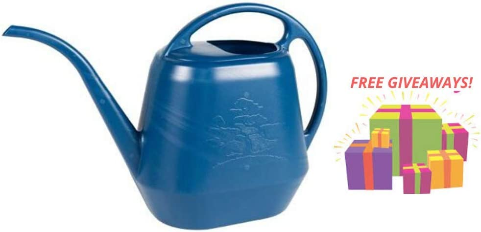 Bloem Aqua Rite Watering Can 144 oz Deep Sea with Exciting