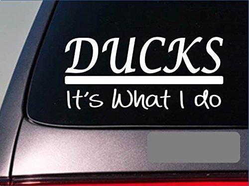 Ducks sticker decal *E270* duck hunting duck blind shell shotgun camo boat lab