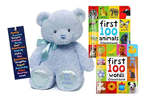 Pinstriped Ribbon (Baby Gift My First Teddy Blue Stuffed Animal, First 100 Words and First 100 Animals Board Books Bundle - GIFT READY)