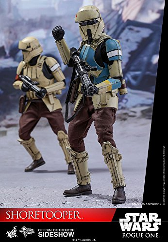 (Hot Toys Star Wars Rogue One A Star Wars Story Shoretrooper 1/6 Scale Figure)