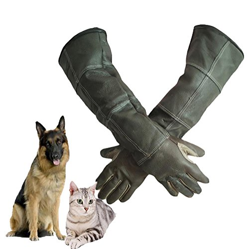 DAN Animal Handling Gloves For Cat Dog Bird Snake Parrot Lizard ,Anti-bite/scratch Gardening Wild Animals Protection Gloves by DAN