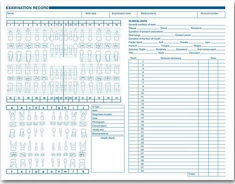 EGP Dental Exam Record, Anatomic & Periodontics Diagrams, Horizontal Layout, Quantity 250 by EGPChecks