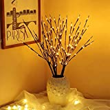 """EAMBRITE 3PK 30"""" Brown Wrapped Lighted Twig Stake with 60LT Warm White LED bulbs for outdoor and indoor use"""