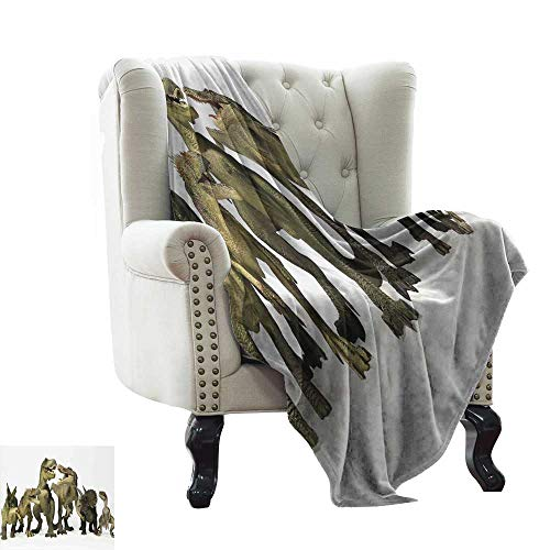 LsWOW Flannel Fleece Blanket Kids,Dinosaurs T-Rex Jurassic 3D Dino Fossil Art Design History Blanket for Sofa Couch TV Bed All Season 50