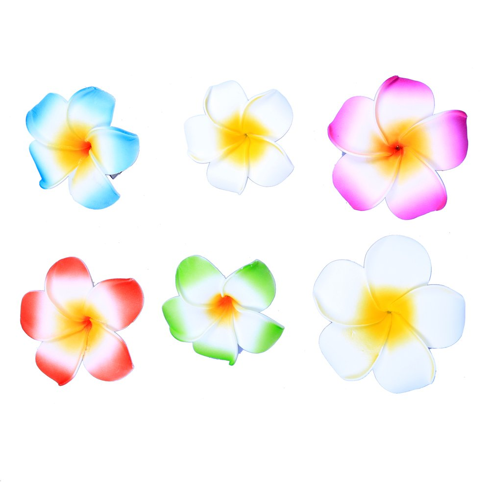 Amazon Pack Of 5 Hawaiian Flowers Hair Clips Bridal Barrette
