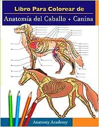 Libro para colorear de Anatomía del Caballo + Canina: 2-en-1 Compilación | Libro de colores de autoevaluación para estudiar muy detallado de Anatomía ... amantes de los animales y adultos