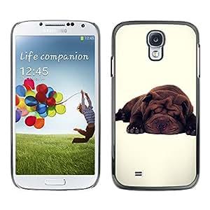 iBinBang / Funda Carcasa Cover Skin Case - Linda raza del perro blanco Sleepy Cansado - Samsung Galaxy S4 I9500