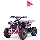 Renegade Race-X 36V 1000W Rechargeable Electric Quad Bike - Pink