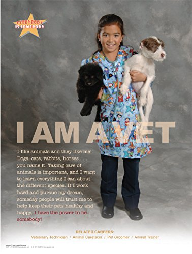 Everybody Is Somebody Laminated Educational Career Options Poster Series of 10 for Elementary and Middle School Students