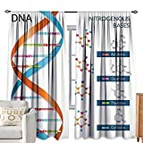cobeDecor Half Blackout Curtains: Educational DNA Bases Chemistry Biochemistry Biotechnology Science Spiral Symbol Genetic Multicolor Mildew-Proof Polyester Fabric W84 xL84