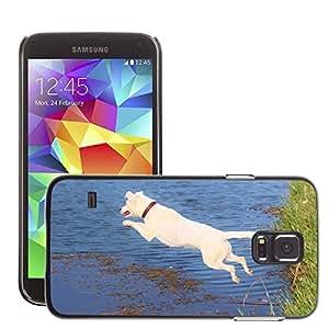 Etui Housse Coque de Protection Cover Rigide pour // M00110062 Perro de salto de agua Movimiento // Samsung Galaxy S5 S V SV i9600 (Not Fits S5 ACTIVE)
