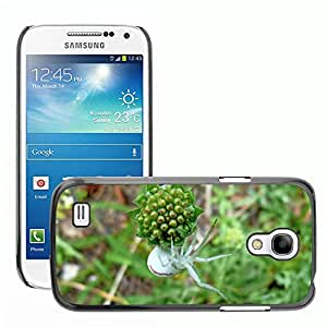 Etui Housse Coque de Protection Cover Rigide pour // M00116239 Insectos Araña blanca Macro // Samsung Galaxy S4 Mini i9190