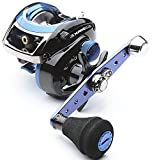 Abu Garcia AMBASSADEUR. BLUEMAX ship L Review