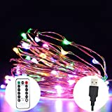 SW LED Fairy String Lights USB/AC Powered with Timer Remote Control Dimmable, 33ft 100 LEDs Multicolor Copper Wire for Indoor Outdoor Decorative (multicolor)