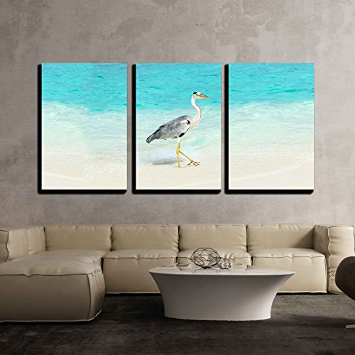 - wall26 - 3 Piece Canvas Wall Art - Heron at the Beach on Maldivian Island - Modern Home Decor Stretched and Framed Ready to Hang - 16