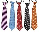 Bundle Monster 5 pc Boys Mixed Pattern Pre-Tied Elastic Fashion Neckties - Set 5: Color Splash
