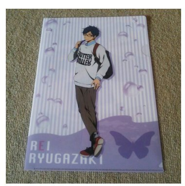 free-limit-clear-file-ryugasaki-rei-new-from-japan-f-s