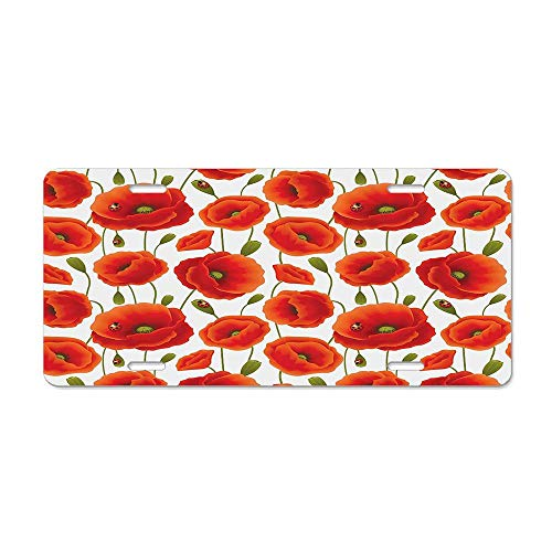 RAEDGEC Poppy Flowers with Ladybirds Vibrant Colors Rural Country Surroundings Image Customized License Plate Cover Aluminum Metal Car Licenses Plate Frame Holder for US Vehicles