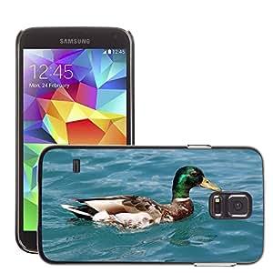 Etui Housse Coque de Protection Cover Rigide pour // M00134652 Patos Pato Animal Ave de agua Agua // Samsung Galaxy S5 S V SV i9600 (Not Fits S5 ACTIVE)