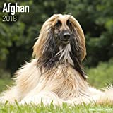 Afghan Calendar - Dog Breed Calendars - 2017 - 2018 wall Calendars - 16 Month by Avonside