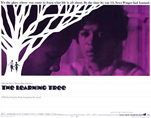 The Scholarship Tree POSTER Movie (1969) Style A 11 x 14 Inches - 28cm x 36cm (Kyle Johnson)(Alex Clarke)(Estelle Evans)(Dana Elcar)(George Mitchell)