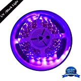 AMARS 5M/16.4FT 300 LED 24W Black Lights Strip UV Blacklight Fixture, DC12V Ultraviolet UV Purple Lighting (Indoor and Dry Environment Use)