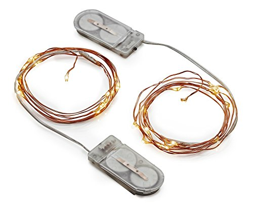 Radiance LED String Lights, 6 ft, Copper Wire, Warm White, Battery Powered (2 Pack)